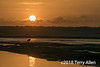 Sunrise with stork