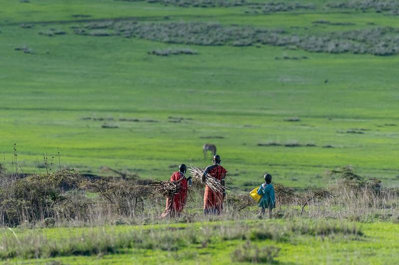 Maasi women and child gathering firewood, Ngorongoro Conservation Area, Tanzania
