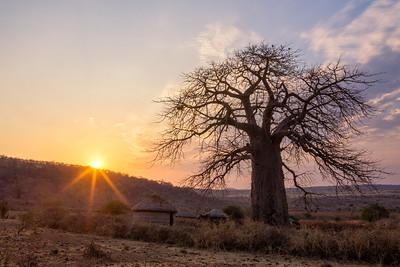 Morning in a Maasai Village - Tanzania