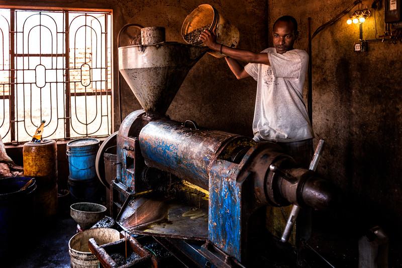 Making Sunflower Oil - Tanzania