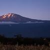 Kilimanjaro Sunset - Tanzania