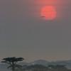 Short after sunrise, Ndutu, Tanzania, Christer Widlund, Febr. 2014.