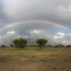 rainbow over Ndutu, february 16, 2018, iphone photo, van miller