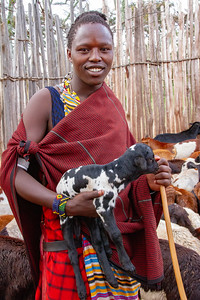 Maasai young person watching over the goats