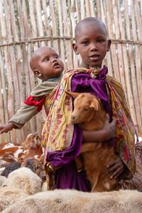Maasai brothers tending the goats