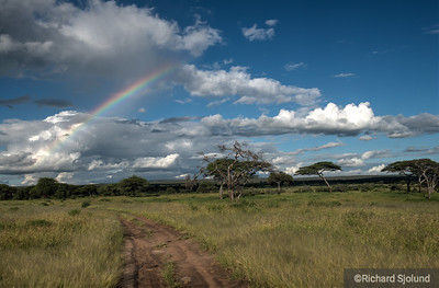 A Rainbow over the trail in Tanzania