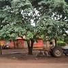 Tractor in Tanzania