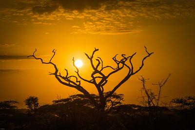 Sunrise at Ngorongora
