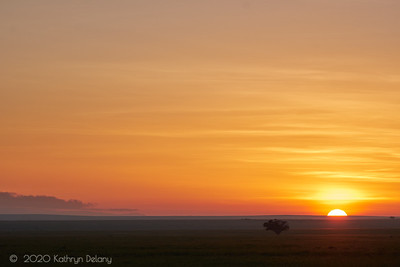 Serengeti Sunrise on the plains
