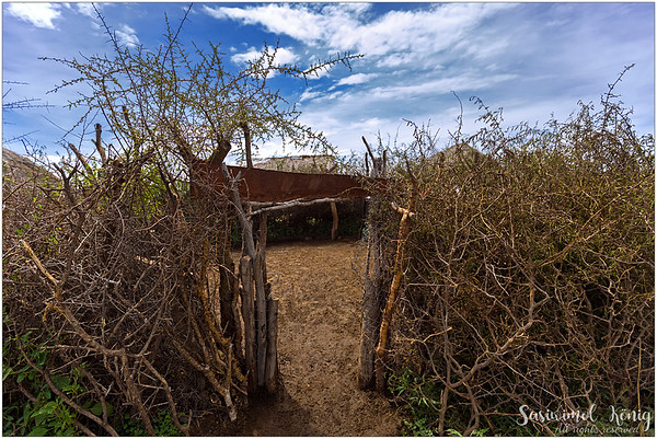 Not so far from houses, we approached an interesting place where they hide livestock from wild animals at night. A fence made of thorny branches of Acacia tree.