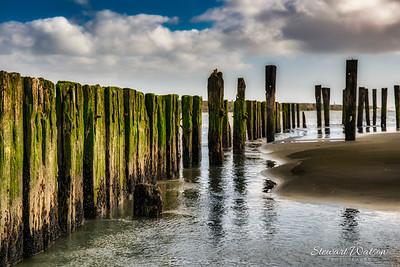 Patea estuary
