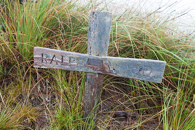 Ralph Wood grave among tussock on Waiopehu Track, Tararua Forest Park