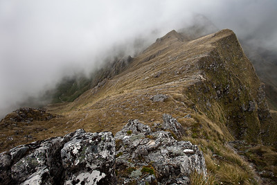 Neill Ridge running east off Mt Hector to Winchcombe Peak, Neil and Cone Ridge. Tararua Range