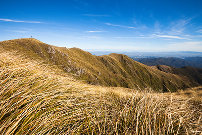 Mount Holdworth trig, looking south east across High Ridge and into the Wairarapa, Tararua Forest Park