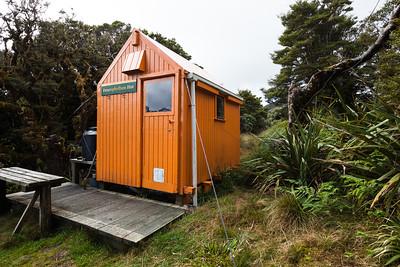 Dracophyllum Hut, Tararua Forest Park