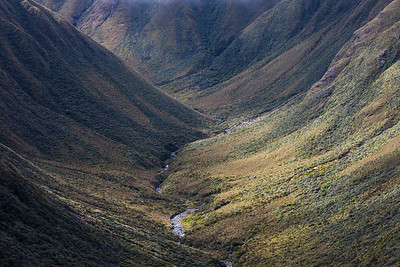 Park Valley, headwaters of Park River, Tararua Forest Park