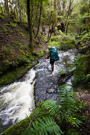 Male tramper crossing Blackwood Stream, Mangahao - Makahika Track, Tararua Forest Park
