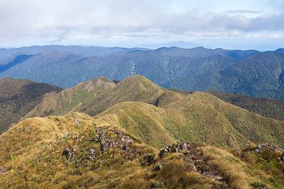 Open tops, looking towards Butcher Knob, Tararua Range