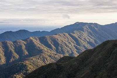 Beech covered ridges, Tawirikohukohu peak and Mangahao Valley, Tararua Range