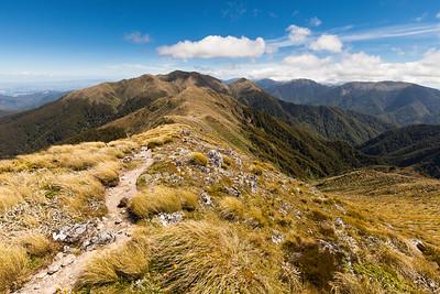 Ridge between Jumbo and Mount Holdsworth, Holdsworth Jumbo Circuit, Tararua Range