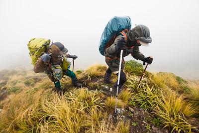 Two trampers climbing Mount Crawford in bad weather, Main Range, Tararua Forest Park