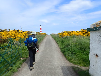 Brian walks to Tarbat Ness Lighthouse