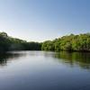 Mangrove Lagoon.