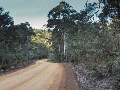 Tasmanian dirt road
