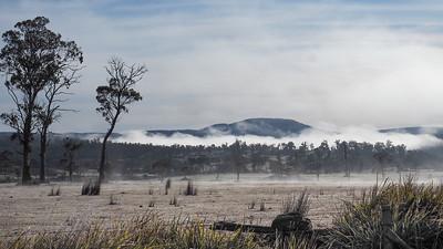 A frosty, misty morning