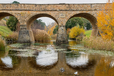 Tasmania is a delightful area, going into fall when the northern hemisphere is going into spring.  Old bridges and building abound