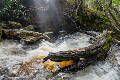 Shafts of light make photographing the rushing moss covered streams and interesting experience