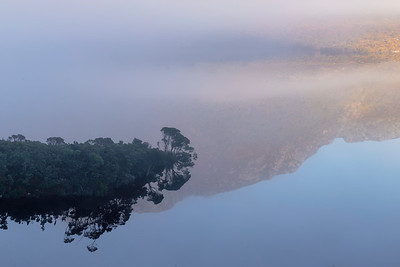 Fog and reflections add mystery to the morning