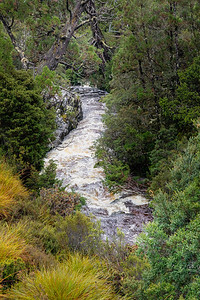 Rocks, trees, streams and many interesting plants line the trails which run for tens of kilometers through the area