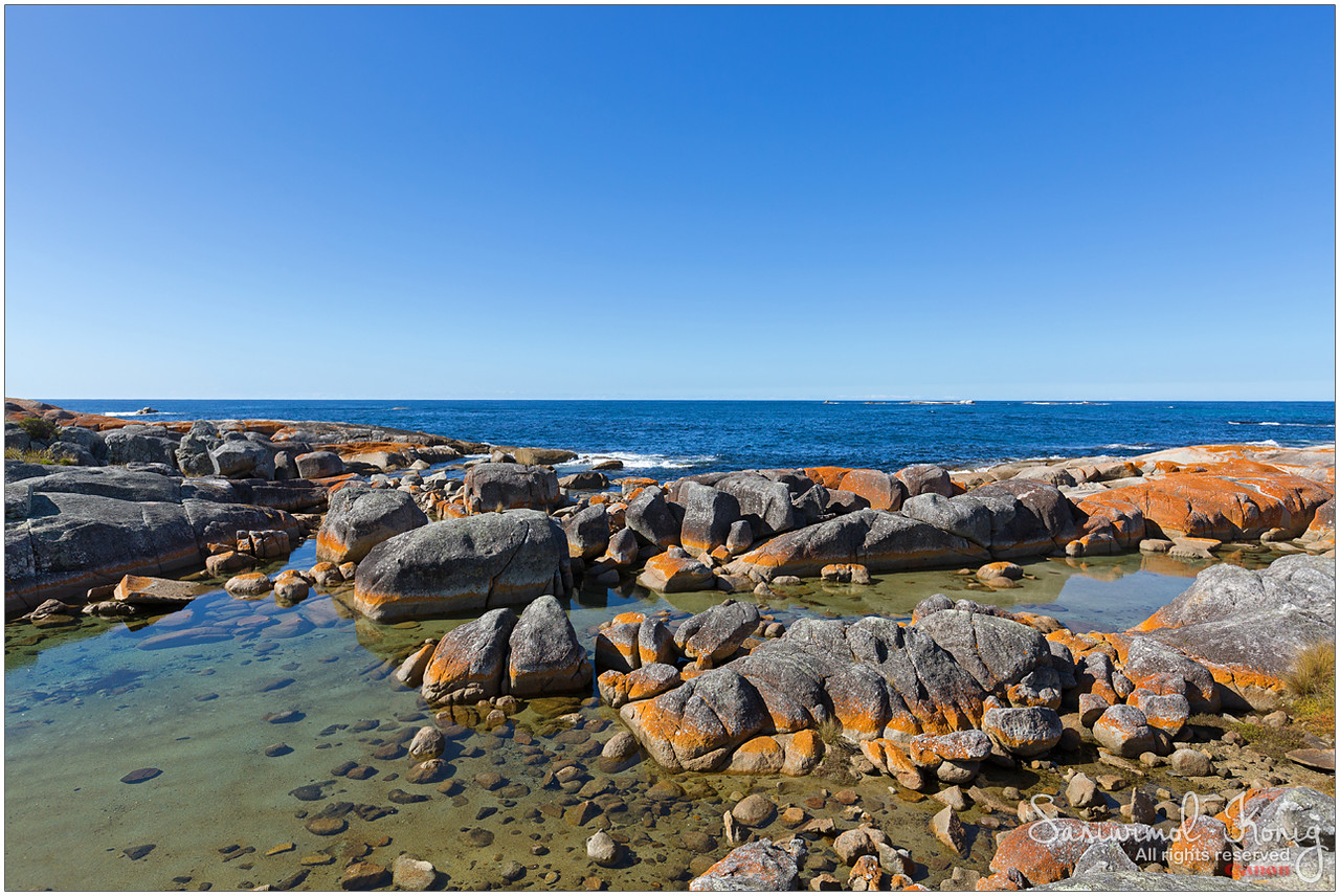 Scenic view at Bay of Fires. Orange lichen growing on granite rocks