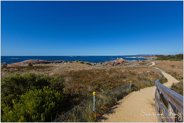 Lovely afternoon @ Bay of Fires
