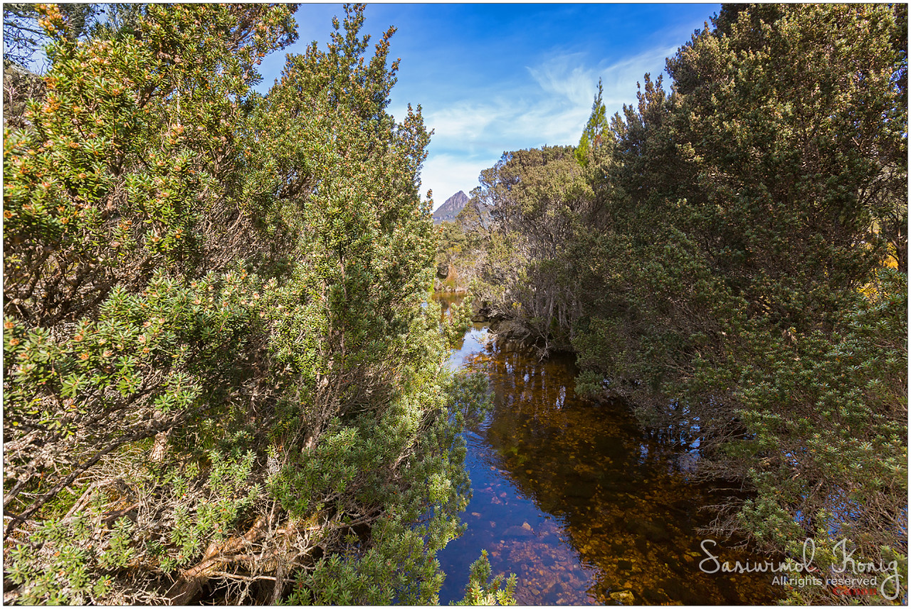 Small natural stream of water named Dove river, channel to Dove Lake at Cradle Mountain