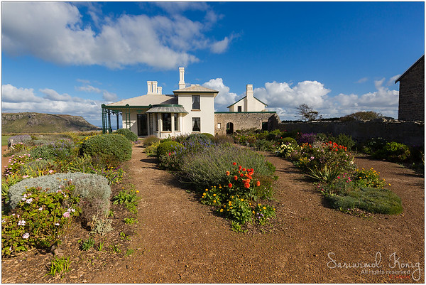 Beautiful garden at Highfield House, Stanley, Tasmania