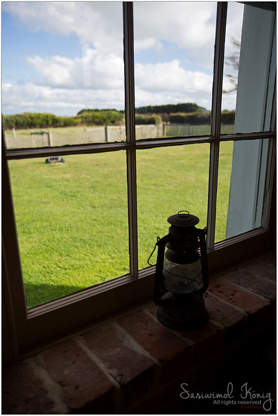 Kitchen window with good view of sheep paddock,  Highfield House