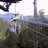 Huon Valley Tour 783