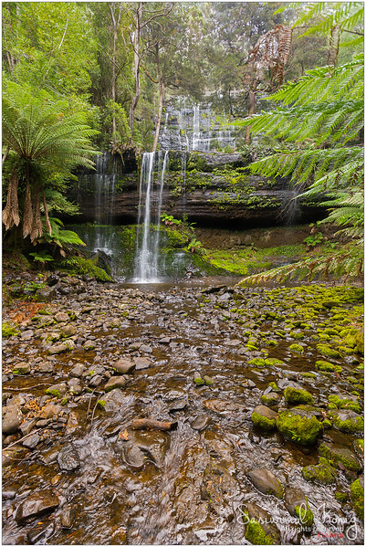 Russell Falls at Mount Field national park