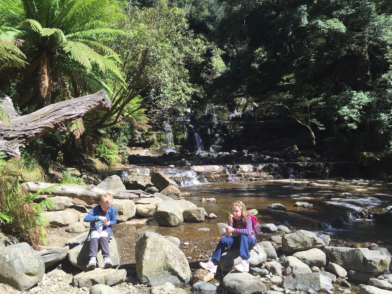 A pause at Liffey Falls