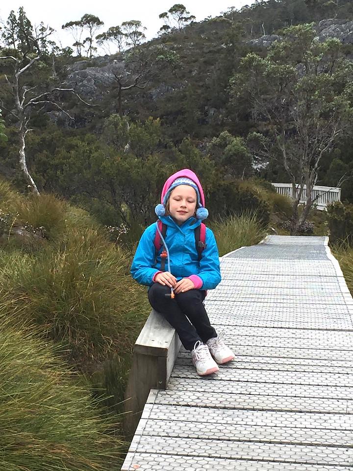 Asha on the Cradle Valley boardwalk