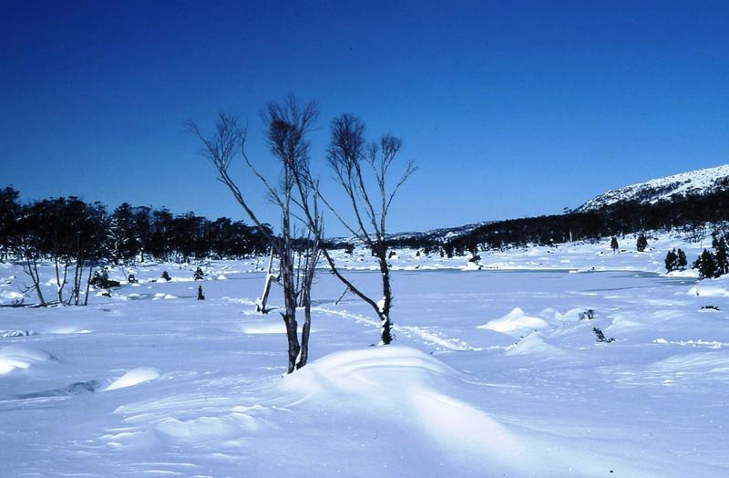 Lake Loane