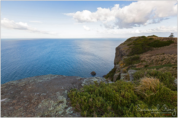 View of Bass Strait from lookout