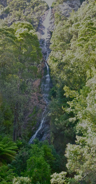 Montezuma Falls from suspension bridge