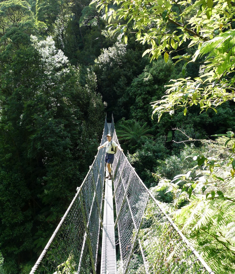 Suspension bridge under Montezuma Falls