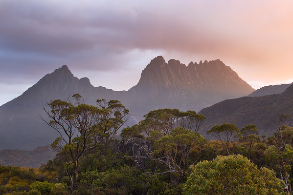 Cradle Mountain III