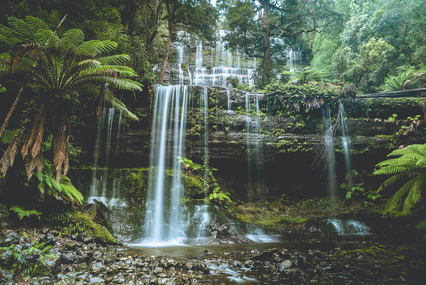 Russell Falls, Tasmania #DiscoverTasmania #TassieStyle #TasmaniaParks #Tasmania #Tassiepics #Tasmaniagram #Tassie #SeeAustralia #TasmaniasNorthWest #HobartandBeyond #CradleMountain #DoveLake #WorldHerritage #TravelPhotography #Nikon #LandscapeLovers