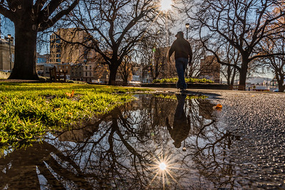 Reflection at Parliament House Gardens.