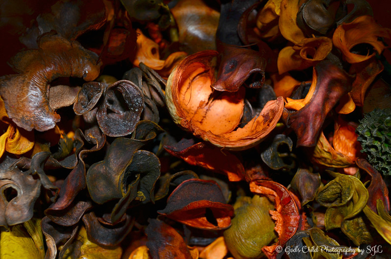 "November 1, 2014<br /> <br /> Potpourri in a glass vase on table <br /> <br /> ""HAPPY THANKSGIVING 2014"" Theme"